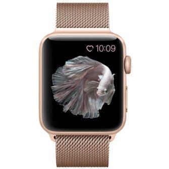 Apple Watch Rihm 841300297E 4 08 19